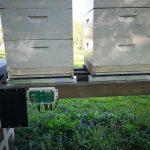 Nosveriet savu bišu stropu ar bišu stropu svariem